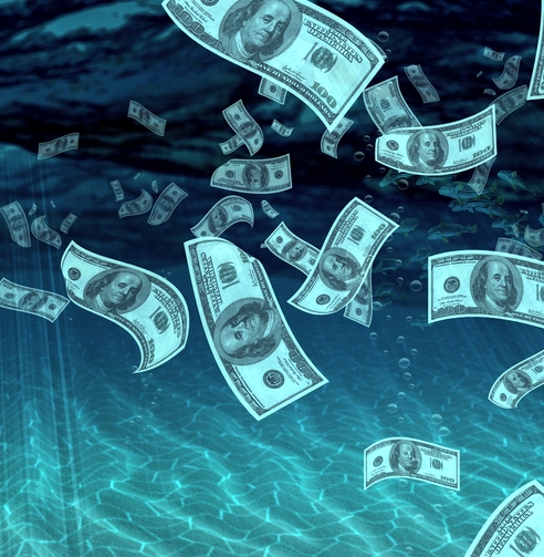 The Value of Liquidity: Capitalize On Your Cash!